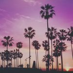 Zon, zee en vitamine D
